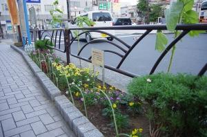 花壇コンクール エントリーNo.2