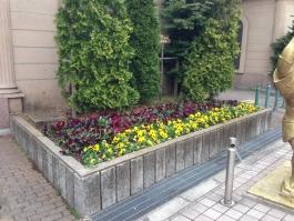 亀有リリオパークの花壇