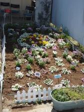 地域活動支援センターコパン花壇
