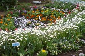 いきいきと花いっぱい