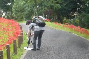水元公園の初秋