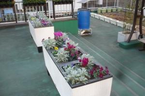 丹精込めた区民の庭園