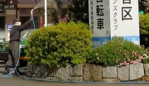 金町駅北口の花壇 その1
