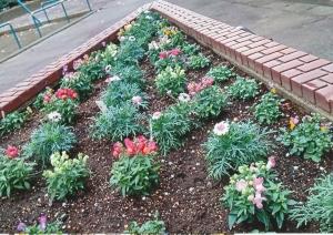 スワンガーデン花壇
