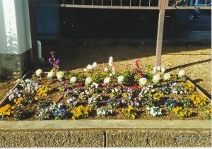 区役所バス停前花壇