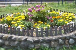 春爛漫の公園花壇(3)