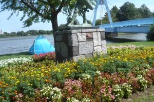 今夏の水元公園の自然を散歩する5