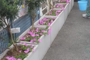 立石の花に幸あり
