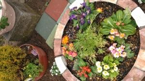新しい花壇が出来ました♬
