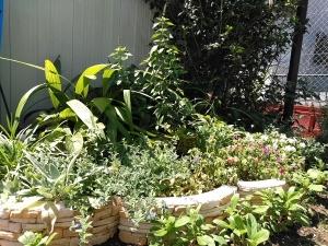 第3の花壇