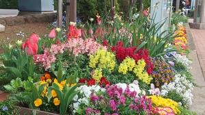 花祭りかと・・・。