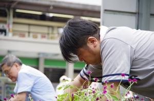 花で彩る金町北口駅前