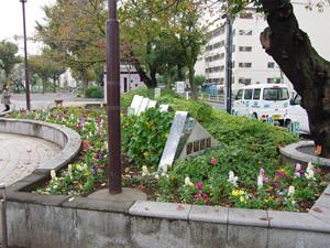金町公園花壇